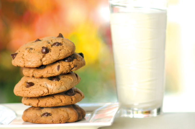 Low fat cookies recipes