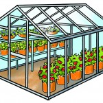 Farm Facts: Nursery & Greenhouse Industry