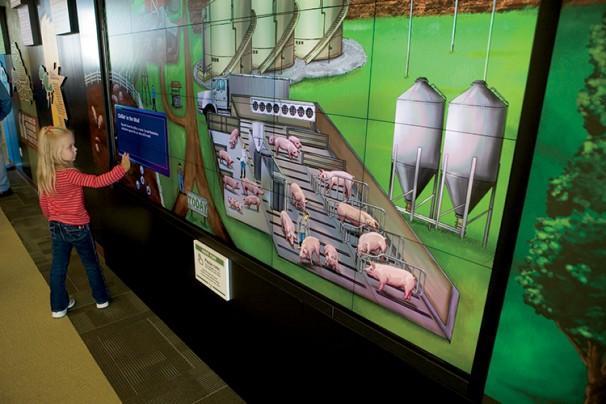 The Pig Adventure at Fair Oaks Farm