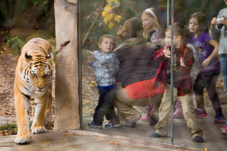 Indiana zoos