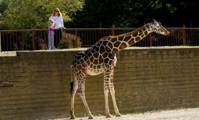 Mesker Park Zoo & Botanic Garden in Evansville, Indiana