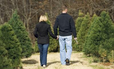 Indiana Christmas Tree Farms