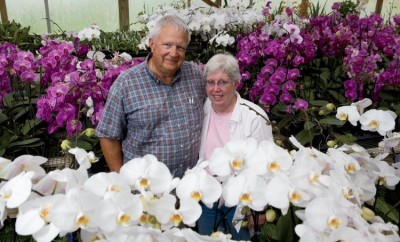 Dick and Sandy Wells of Hilltop Orchids in Cloverdale IN