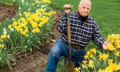 Jerry Cieslak daffodils